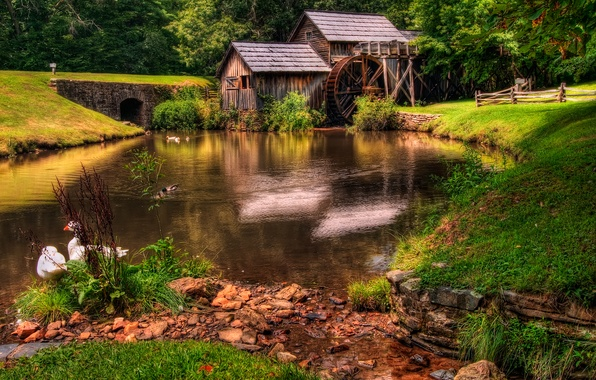 Picture forest, grass, landscape, nature, river, green, old, colors, hdr, mill, grass, beautiful, forest, architecture, green, …