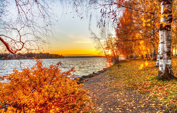Picture autumn, leaves, trees, landscape, sunset, nature, lake