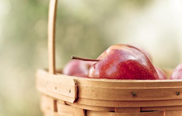 Picture macro, red, background, widescreen, Wallpaper, basket, apples, Apple, food, blur, fruit, wallpaper, fruit, basket, widescreen, ...