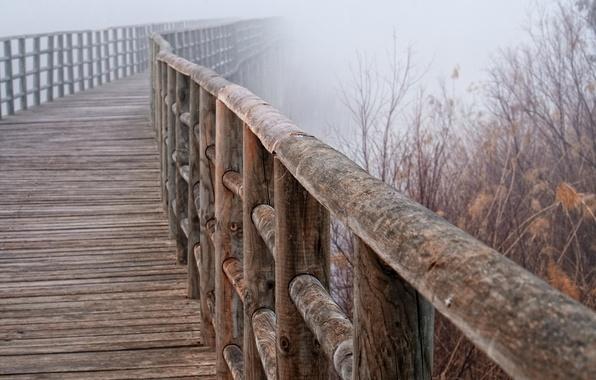 Picture macro, bridge, fog, railings