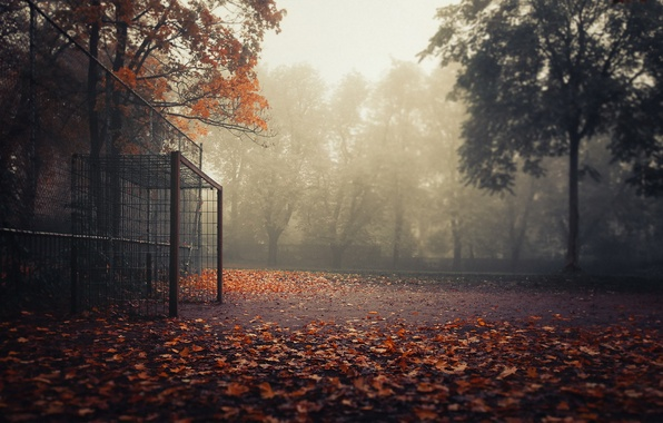 Picture autumn, sport, gate