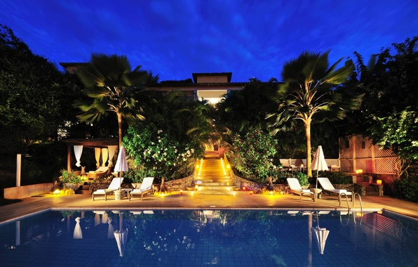 Picture trees, palm trees, furniture, plants, the evening, pool, the hotel, the loungers.