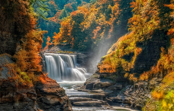Picture autumn, forest, trees, stones, rocks, waterfall, stream, cascade, thresholds