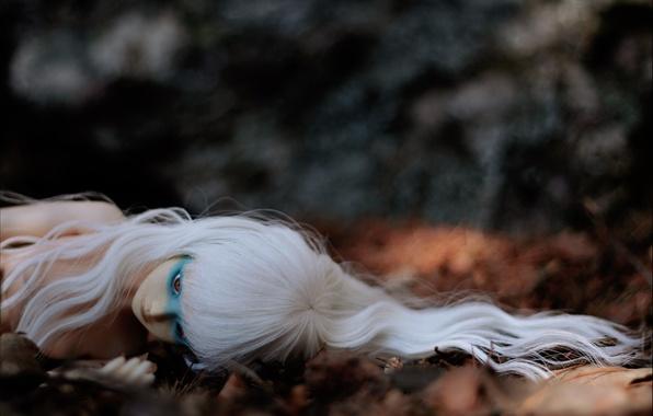 Picture autumn, Doll, white hair