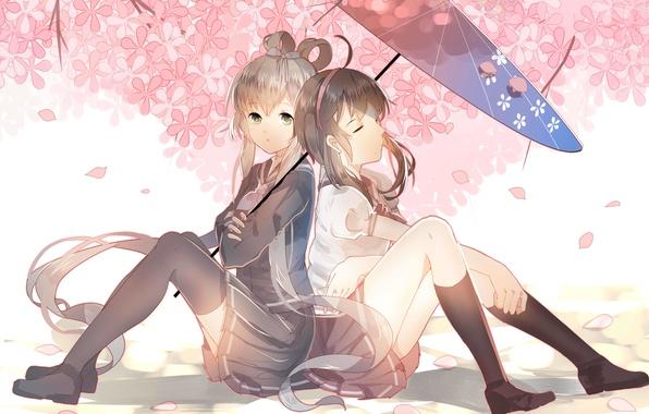 Picture flowers, girls, umbrella, anime, Sakura, art, vocaloid, Schoolgirls, luo tianyi, yuezheng ling, vocaloid china, weitu
