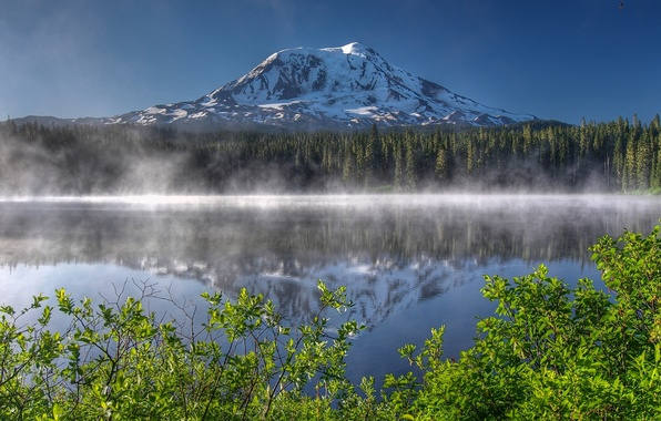 Picture forest, lake, reflection, mountain, morning, the volcano, Washington, the bushes, Washington, The cascade mountains, Mount …