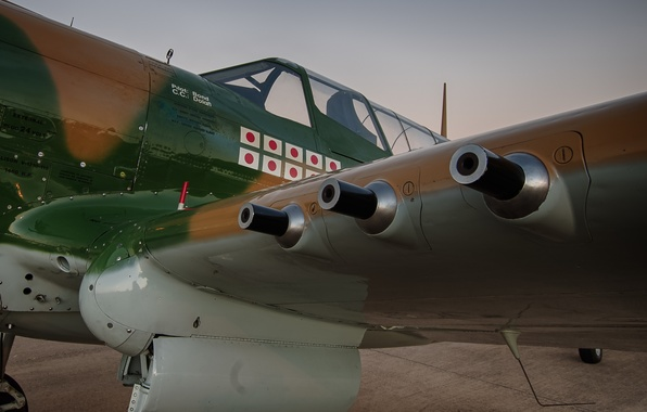 Picture weapons, fighter, P-40, Warhawk