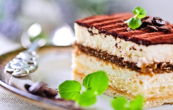 Picture food, chocolate, sweets, cake, cake, mint, dessert, sweet, biscuit, tiramisu