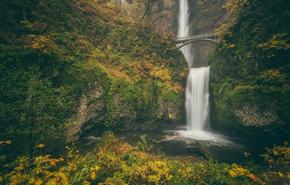 Picture autumn, bridge, rock, waterfall, Oregon, Oregon, Columbia River Gorge, the Multnomah falls, Benson Bridge, Multnomah …