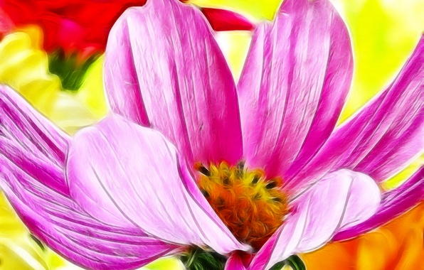 Picture flower, macro, line, paint, petals, touch