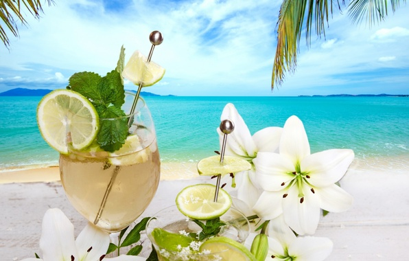 Picture beach, cocktail, summer, drink, beach, fresh, flowers, fruit, drink, cocktail, palms, tropical