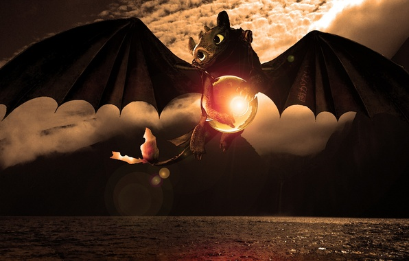 Picture sea, flight, sphere, dragon, Toothless, How to train your dragon, animated film, Wazzy88, Toothless, The …