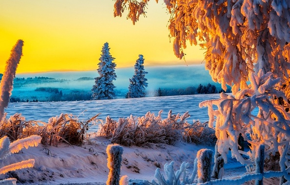 Picture winter, road, field, grass, snow, landscape, photo, morning
