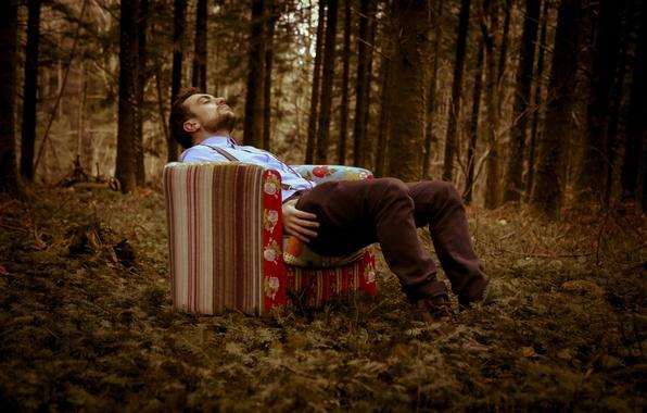 Picture forest, photographer, woke up, Florent Bellurot, sat, fell asleep