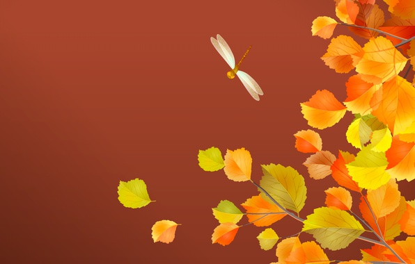 Picture autumn, leaves, dragonfly
