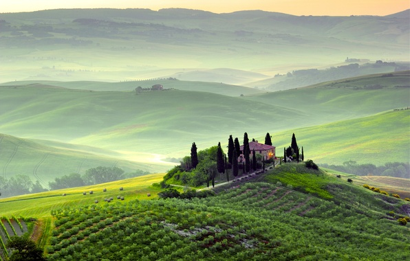Picture greens, trees, landscape, nature, fog, dawn, hills, field, morning, Italy, Italy, Tuscany, Toscana, Pienza, Pienza, …