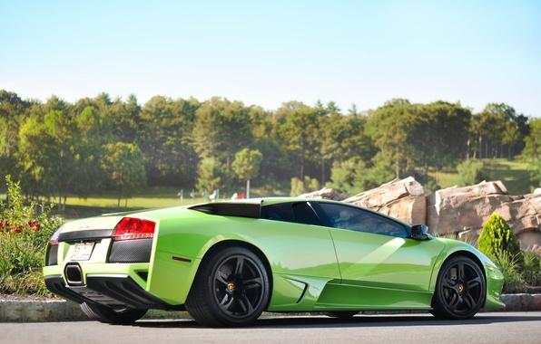 Picture the sky, trees, green, reflection, green, lamborghini, rear view, murcielago, Lamborghini, Murcielago, lp670-4 SV