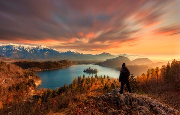 Picture lake, view, dal, Lake Bled