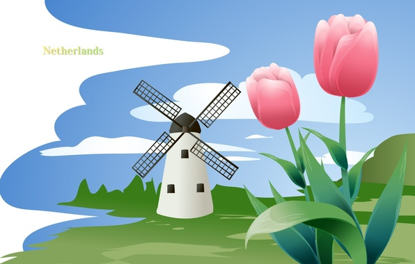 Picture flowers, travel, mill, Netherlands, tourism, country, Netherlands, the state