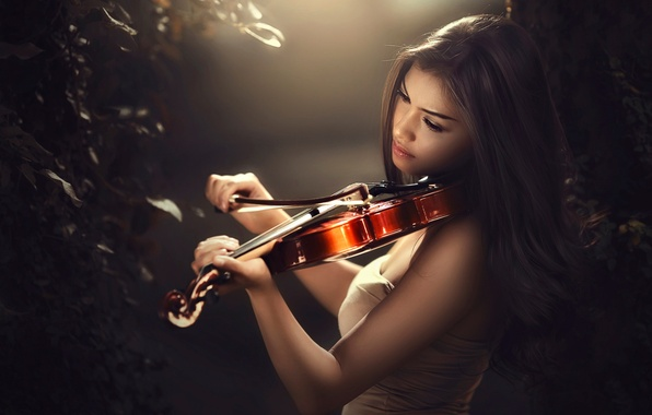 Picture violin, bow, bokeh, violinist