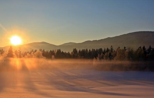 Picture winter, landscape, sunset, fog
