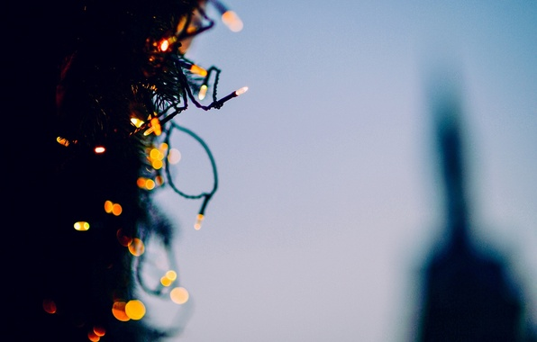 Picture background, tree, Wallpaper, tree, new year, blur, lights, wallpaper, decoration, garland, widescreen, background, holidays, bokeh, …