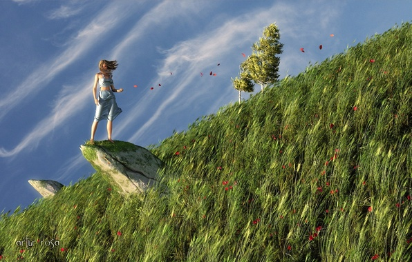 Picture grass, girl, nature, rock, the wind, stone, Maki, petals, hill, art, slope