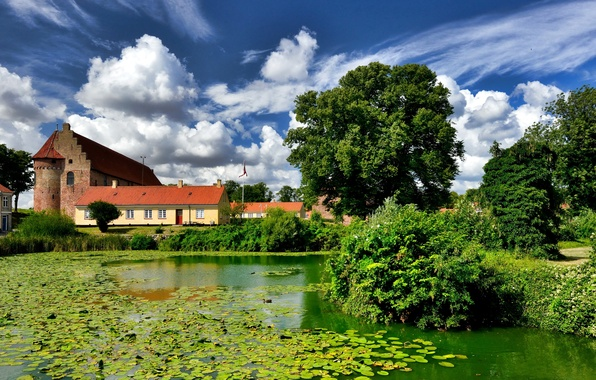 Picture greens, the sky, the sun, clouds, trees, pond, the reeds, castle, home, Denmark, the bushes, …