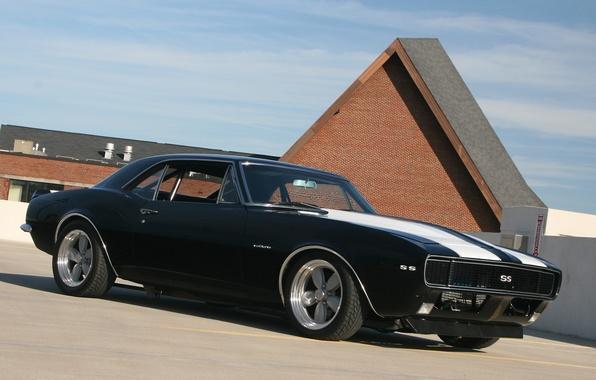 Picture Chevrolet, Camaro SS, Black, white stripes