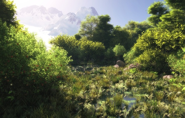 Picture greens, forest, grass, water, mountains, swamp, art