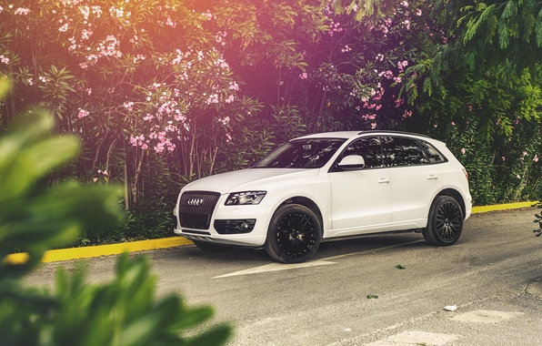 Picture white, Audi, Audi, white, Device One