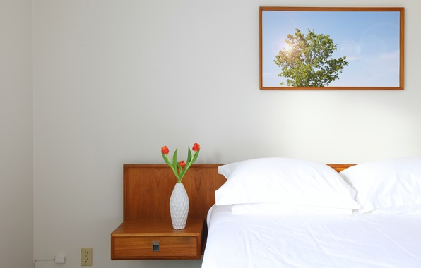 Picture flowers, photo, photo, bed, outlet, tulips, red, table, vase