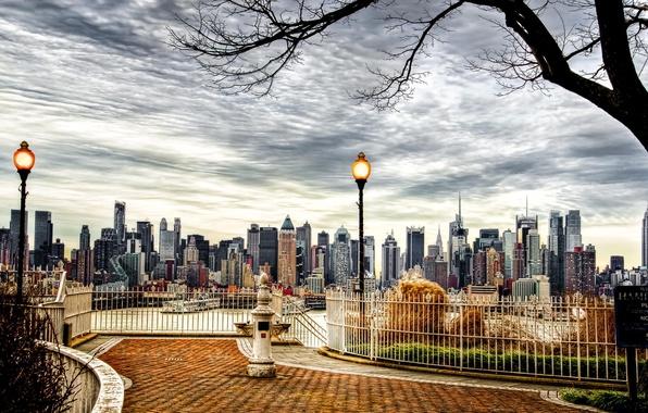 Picture autumn, the city, tree, skyscrapers, USA, America, USA, New York City, new York
