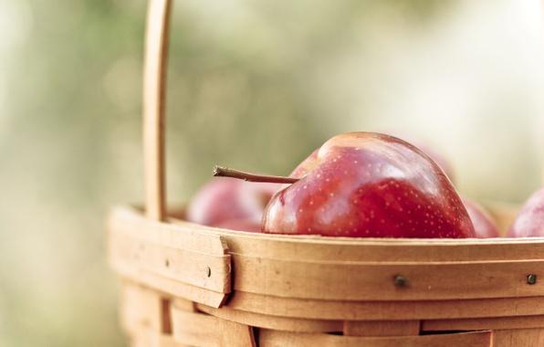 Picture Wallpaper, basket, apples, fruit, vitamins, wallpapers