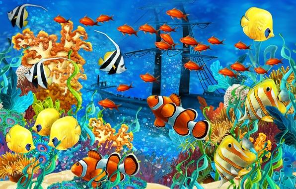 Picture sea, fish, algae, ship, sailboat, corals, the bottom of the sea