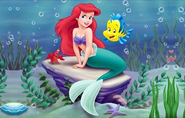 Picture sea, algae, cartoon, crab, mermaid, Disney, Ariel, Ariel, Disney, Little mermaid, Little mermaid, sunfish