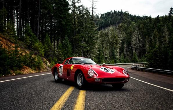Picture Ferrari, Ferrari, 1964, Series II, Pininfarina, 250 GTO