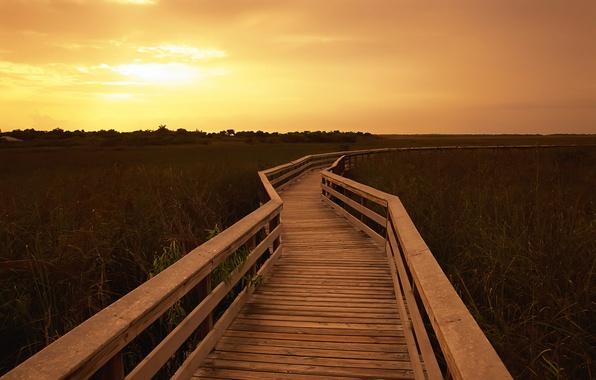 Picture the sky, landscape, nature, steps