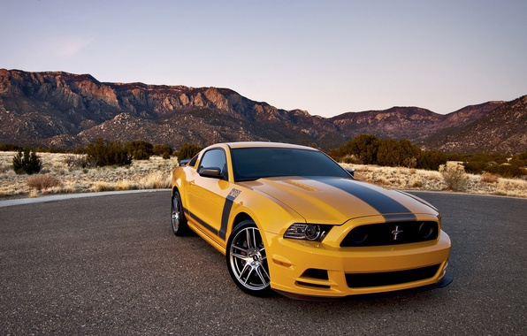 Picture car, Ford, ford mustang, rechange, boss 302