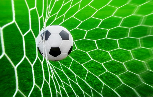 Picture grass, mesh, lawn, football, the ball, goal