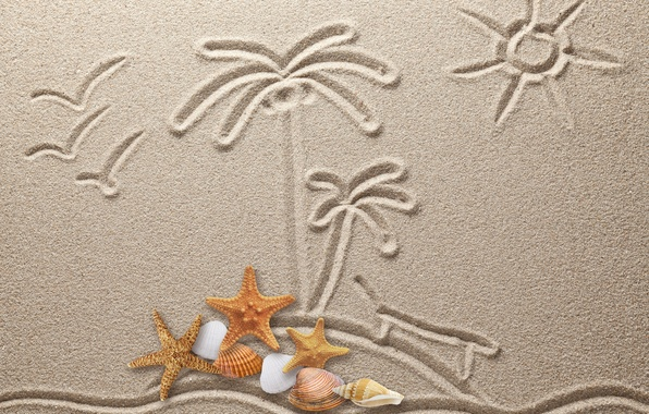Picture sand, figure, texture, sand, drawing, starfish, seashells