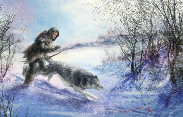 Picture animal, wolf, art, hunter, winter. snow. trees