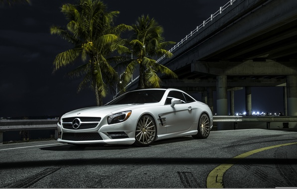 Picture car, palm trees, Mercedes, white, SL550