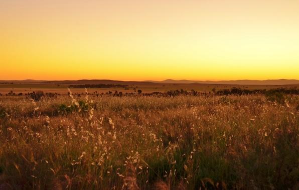 Picture field, sunset, hills, valley, horizon, solar, yellow sky