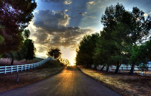Picture road, greens, the sky, grass, leaves, the sun, clouds, trees, landscape, nature, background, tree, widescreen, ...