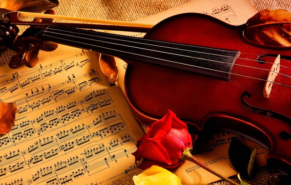 Picture notes, music, violin, roses