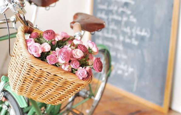 Picture flowers, bike, letters, basket, Board