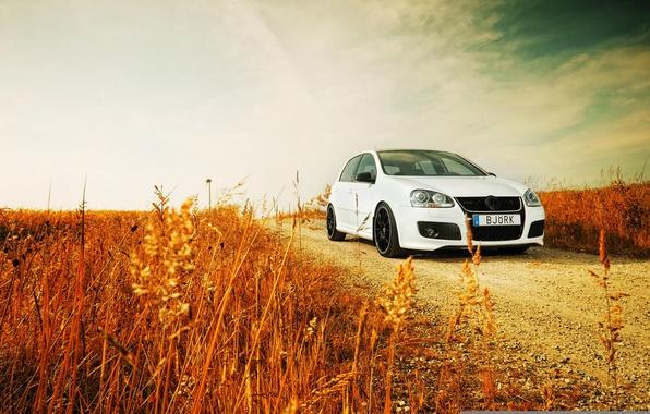 Picture road, grass, nature, volkswagen, Golf, golf, Volkswagen