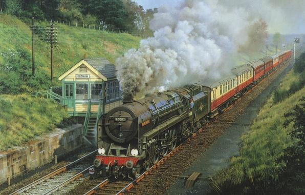 Picture nature, smoke, rails, cars, Train