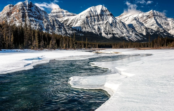 Picture ice, winter, forest, snow, mountains, river, Canada, Alberta, Jasper National Park